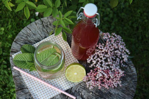 selbstgerechter-Holunderblütensirup